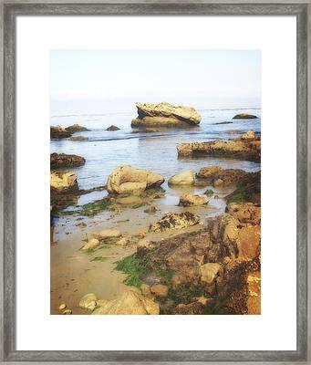 Low Tide Framed Print by Marty Koch
