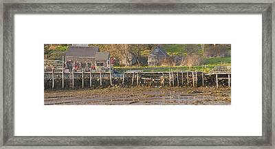 Low Tide Port Clyde Maine Framed Print
