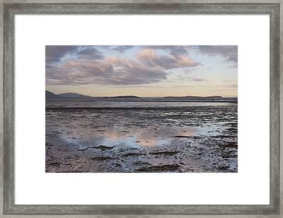 Low Tide Reflections Framed Print by Priya Ghose