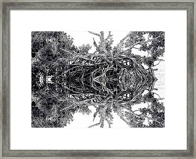 Low Tide Reflects Framed Print