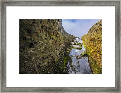 Low Tide Trough 1 Framed Print by Scott Campbell