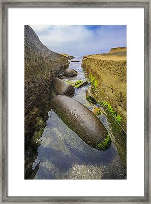 Low Tide Trough 2 Framed Print by Scott Campbell
