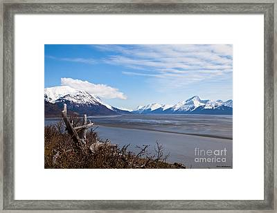 Low Tide Turnagain Arm Framed Print by Chris Heitstuman