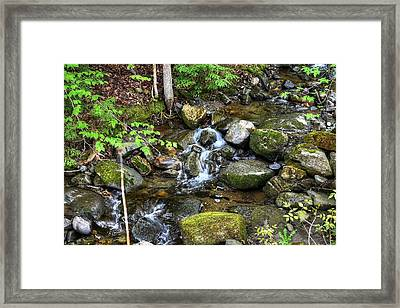 Lowell Mountain Stream Framed Print