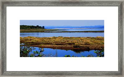 Lower Columbia Panorama I Framed Print by Mamie Gunning