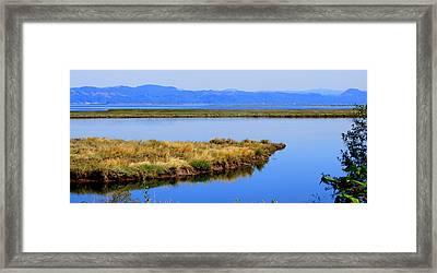 Lower Columbia Panorama II Framed Print by Mamie Gunning