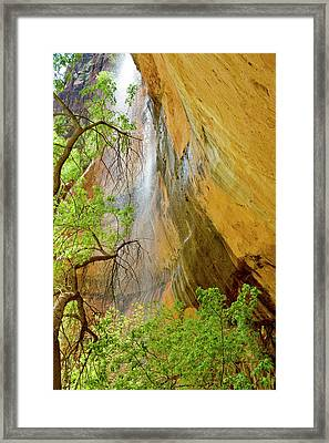 Lower Emerald Pool Waterfall Red Rock Framed Print