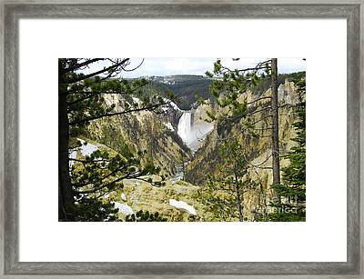 Lower Falls From Artist Point Yellowstone National Park Framed Print by Shawn O'Brien