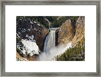 Lower Falls Of The Yellowstone Framed Print by Sue Smith