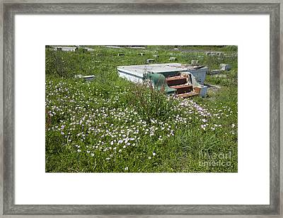 Lower Ninth Ward After Katrina Framed Print