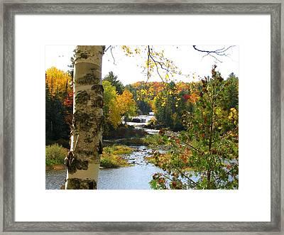 Lower Tahquamenon Falls In October No 1 Framed Print