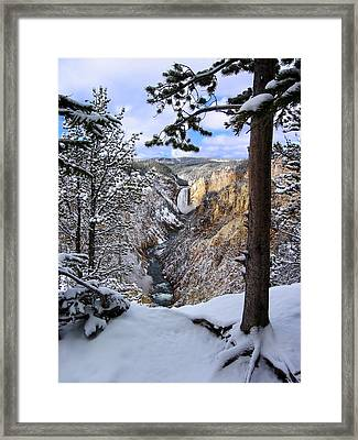 Lower Yellowstone Falls In October Framed Print by Robert Woodward