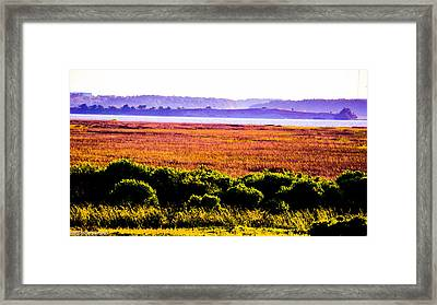 Lowland Light  Framed Print