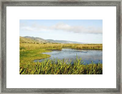 Lowland Marshes Framed Print by Donna Blackhall