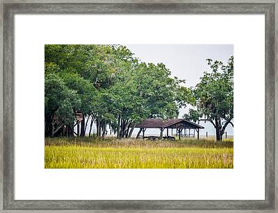 Lowland Picnic Place  Framed Print by Mary Ward
