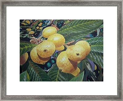 Framed Print featuring the painting Lowquats 2 by Hilda and Jose Garrancho