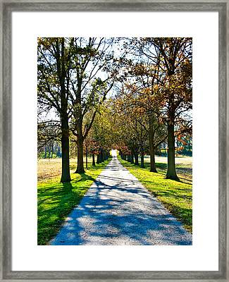 Lowry's Lane Framed Print by Betty Smithhart