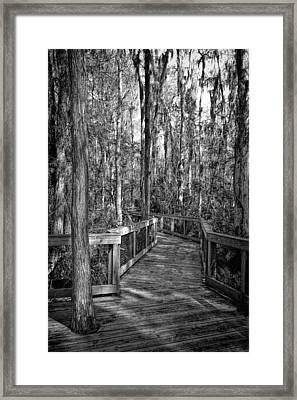 Loxahatchee Refuge-2 Framed Print by Rudy Umans