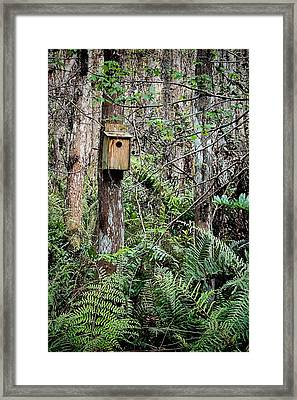 Loxahatchee Refuge-3 Framed Print by Rudy Umans