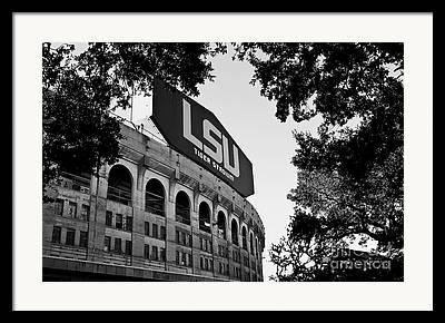 South Louisiana Photographs Framed Prints