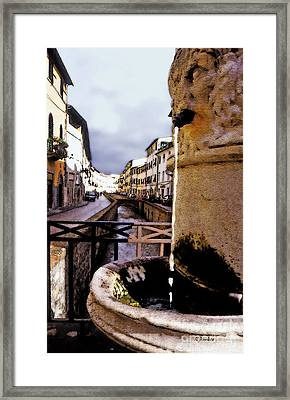 Lucca Wishing Well Framed Print by Linda  Parker