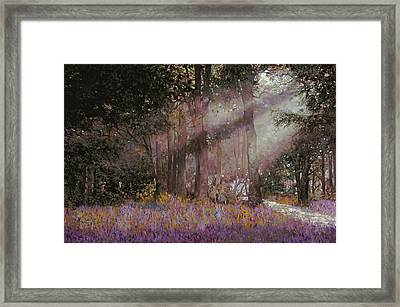 Luci Framed Print by Guido Borelli