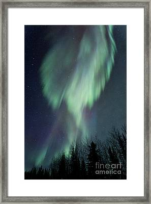 Lucid Dream Framed Print by Priska Wettstein