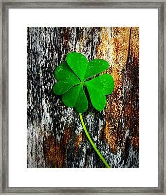 Luck Framed Print