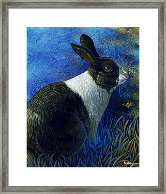 Lucky Blue 2 Framed Print by Cara Bevan