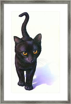 Lucky Cat Framed Print by Andrew Farley