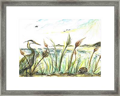 Lucky  Escape  Spike  Hedgehog Framed Print by Teresa White