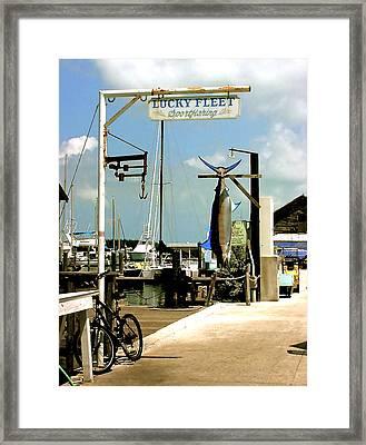 Lucky Fleet Key West  Framed Print