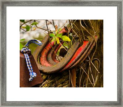 Lucky Horseshoes Framed Print