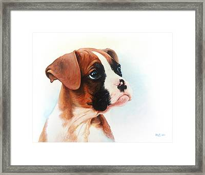 Lucy Framed Print by Kevin Hill