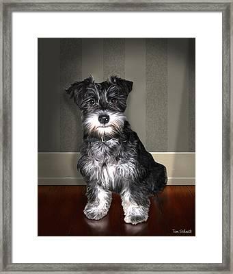 Lucy Lov'd Alot Framed Print by Tom Schmidt
