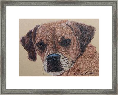 Lucy-puggle Commission Framed Print