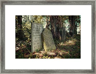 Lucy Framed Print by Tom Mc Nemar