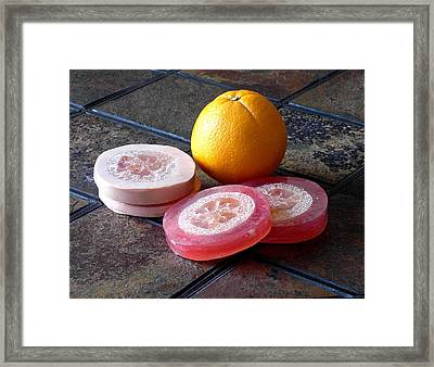 Luffa Red And Pink Soap Framed Print