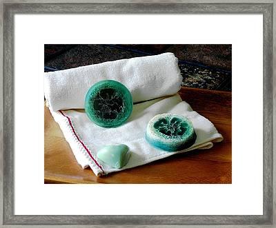 Luffa Turquoise Soap Framed Print by Anastasiya Malakhova