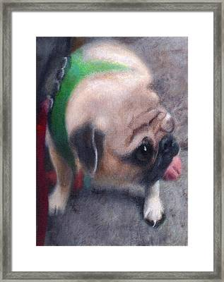Luka Of 25th Street Framed Print by Robert Conway