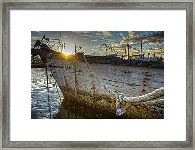 Lulie D Framed Print by Mark Hazelton