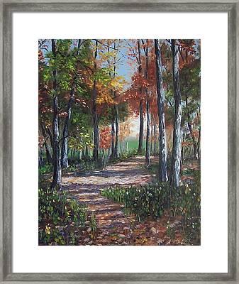 Lullabye Forest Framed Print by Donna Munsch