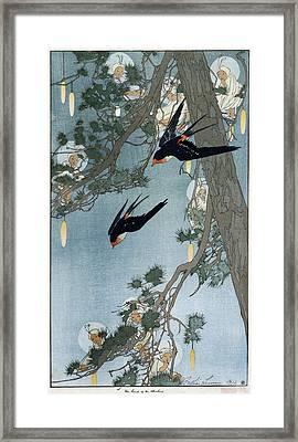 Lum Bluebird, C1916 Framed Print
