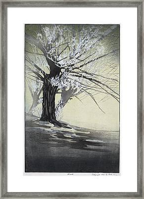 Lum Frost, C1920 Framed Print