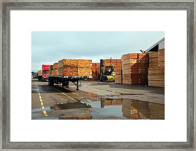 Lumber Cargo Framed Print by Jim West