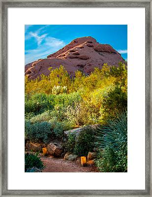 Luminarias In The Afternoon Framed Print