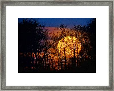 Luminescence Framed Print by Bill Pevlor