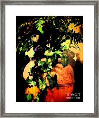 Luminosity Framed Print by Gerlinde Keating - Galleria GK Keating Associates Inc