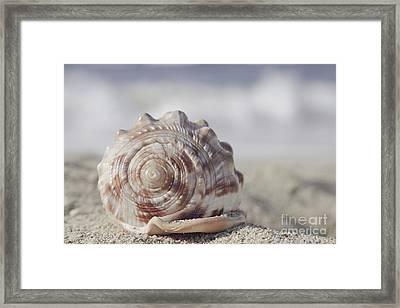 Luminosity Framed Print by Sharon Mau