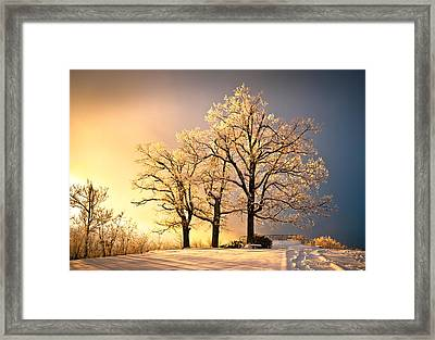 Luminous - Blue Ridge Winter Sunset Framed Print by Dave Allen